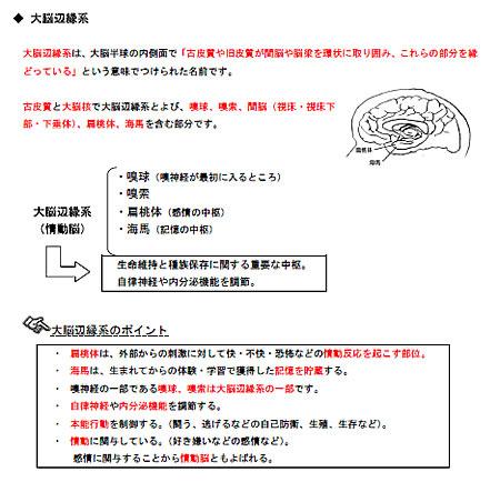 「誰も教えてくれなかった!AEAJアロマテラピーアドバイザー認定教室・講師のための講義テキスト・虎の巻」サンプル画像「大脳辺縁系のポイント」